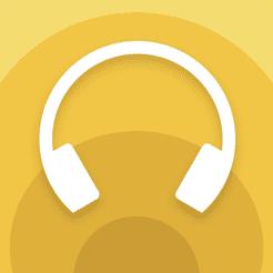 【ソニーWF-1000XM3レビュー】SONYの秀逸ノイズキャンセリング搭載!高性能と高級感を兼ね備えた新世代完全ワイヤレスイヤホン|音楽アプリで設定自在!|優れているポイント:設定を自由にカスタマイズできる専用アプリ