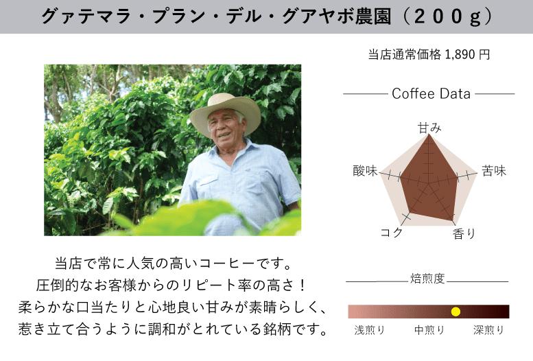 【美味しいコーヒーの入れ方】プロ直伝のコーヒーの入れ方を伝授!クリーンな味わいがクセになるハンドドリップ法|バリスタ級のコーヒーをご自宅で!|珈琲きゃろっとの初回限定お試しセット:グァテマラ・プラン・デル・グアヤボ農園