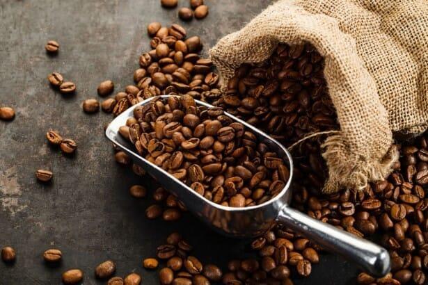 【美味しいコーヒーの入れ方】プロ直伝のコーヒーの入れ方を伝授!クリーンな味わいがクセになるハンドドリップ法|バリスタ級のコーヒーをご自宅で!|必要な器具:コーヒー豆