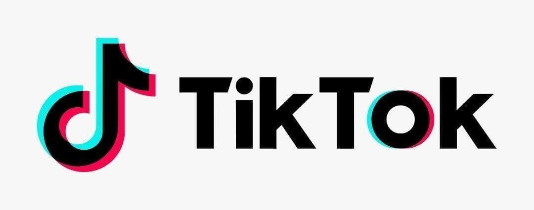 【Tiktok動画を保存する方法】スマホアプリで保存できないビデオはパソコンでダウンロード!Tiktok動画を完璧に保存する方法を徹底解説|スマホアプリでは保存できないTiktok動画を保存する方法